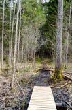 Alte hölzerne Promenade bedeckt mit Blättern im alten Wald Stockfotos