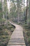 alte hölzerne Promenade bedeckt mit Blättern im alten Wald - vin Stockbilder