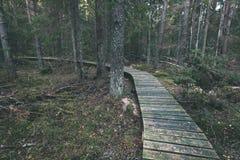 alte hölzerne Promenade bedeckt mit Blättern im alten Wald - vin Lizenzfreie Stockfotos
