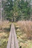 alte hölzerne Promenade bedeckt mit Blättern im alten Wald - vin Lizenzfreies Stockfoto