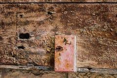 Alte hölzerne Tür mit schmutziger Beschaffenheit der Sprünge, des Rosts und der losen Stücke Stockfotos