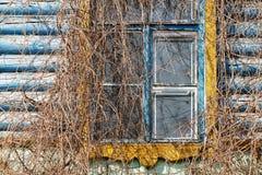 Alte hölzerne Wand mit Fenster und Trauben Stockfotografie