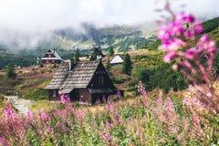 Alte Hütte Stockfotos