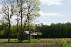 Alte Halle auf dem Gebiet mit dem Frühlingspflanzen von Mais Lizenzfreies Stockbild