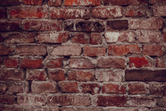 Alte Haus-Backsteinmauer Betrachten der Kamera Ihr Text Stockfoto
