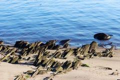alte historische hölzerne Plattform auf der Bank des Nord-Dvina-Flusses, denn flößt Klotz gesammelten sich hin- und herbewegenden Stockfotos