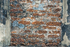 Alte historische Laterite-Wand, Hintergrund-Beschaffenheit Lizenzfreie Stockbilder