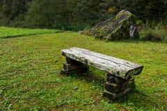 Alte Holzbank in der grünen Wiese Stockfotografie