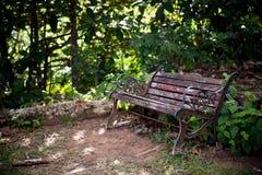 Alte Holzbank in einem grünen Wald Lizenzfreie Stockfotos