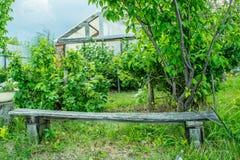 Alte Holzbank im russischen traditionellen Garten Lizenzfreie Stockfotos