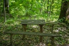 Alte Holzbanken und eine Tabelle im Wald Stockbild