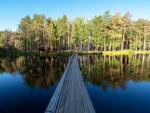 Alte Holzbrücke über dem Fluss für Fußgänger Kiefernwald auf dem Ufer stockfotos