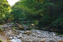 Alte Holzbrücke über einem Gebirgsstrom im Wald Stockfoto
