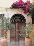 Alte Holzhaushaustür mit Olivenbäumen stockbilder
