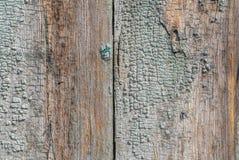 Alte Holzoberfläche mit Sprüngen und Schale malen, abgebrochene Farbe, Beschaffenheit, Hintergrund Lizenzfreies Stockbild