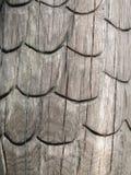 Alte Holzoberfläche mit Verzierungen Lizenzfreie Stockfotos