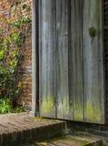 Alte Holztür öffnet sich zu einem vergessenen Garten stockbilder