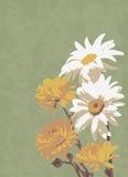Alte Illustration, eines Blumenstraußes der Blumen Lizenzfreie Stockfotografie