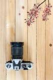 Alte Kamera und Niederlassung der Blume Lizenzfreie Stockbilder