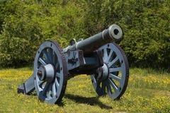 Alte Kanone auf grünem Gras Stockfotos