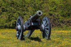 Alte Kanone auf grünem Gras Stockbilder