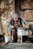Alte Kastanie in Rom Stockfoto