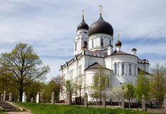 Alte Kathedrale in Lomonosov (Oranienbaum), Russland Lizenzfreie Stockfotos