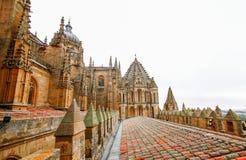 Alte Kathedrale von Salamanca, Stockfotografie