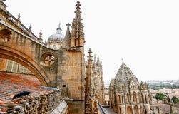 Alte Kathedrale von Salamanca, von Olivenölseife und von Leon, Spanien Stockbild