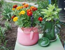 Alte Kessel benutzt in der Gartenauslegung Lizenzfreies Stockbild