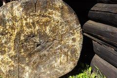 Alte Kiefernstammbeschaffenheit oder -hintergrund Stockfoto
