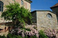 Alte Kirche und schöne rosa Blumen Stockbilder