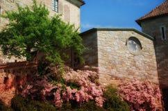 Alte Kirche und schöne rosa Blumen Stockfoto