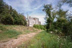 Alte Kirchen- und Abteiruinen im Loire Valley, Frankreich, Stockfoto