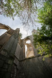 Alte Kirchen- und Abteiruinen im Loire Valley, Frankreich, Lizenzfreies Stockfoto