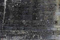 Alte Kleberwand Stockfoto