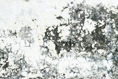 Alte Kleberwandbeschaffenheit Stockbild