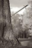 Alte Klinge stößt in einen Baum lizenzfreies stockbild