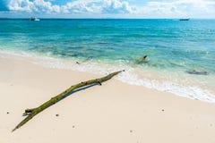 alte Klotznahaufnahme im Meerwasser in Poda-Insel Stockfoto