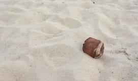 Alte Kokosnuss auf Sandhintergrund Lizenzfreie Stockfotos