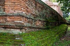 Alte konkrete Backsteinmauer mit Moos Lizenzfreie Stockfotografie