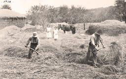 Alte Landwirte Stockbild