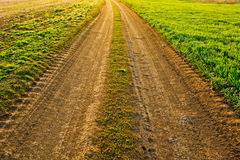 Alte landwirtschaftliche Straße Lizenzfreie Stockfotos