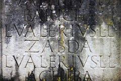 Alte lateinische Beschreibung Stockbild
