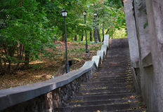 Alte Leiter im Stadtpark Lizenzfreies Stockfoto
