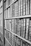 Alte Lesung Lizenzfreies Stockbild