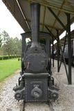 Alte Lokomotiven und Lastwagen Lizenzfreies Stockfoto