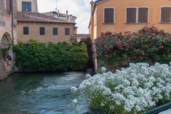 Alte Mühle auf Sile River mit Rosengarten in der Mitte von Treviso Lizenzfreies Stockfoto