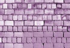 Alte magentarote getonte Backsteinmauerbeschaffenheit Stockbild