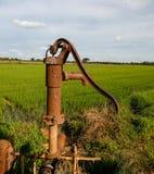 Alte manuelle Wasserpumpe Hebelpumpe WeinleseRoheisen-Wasserpumpe mit Griff für das Pumpen stockfotografie